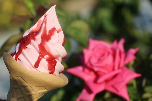 中之島 薔薇
